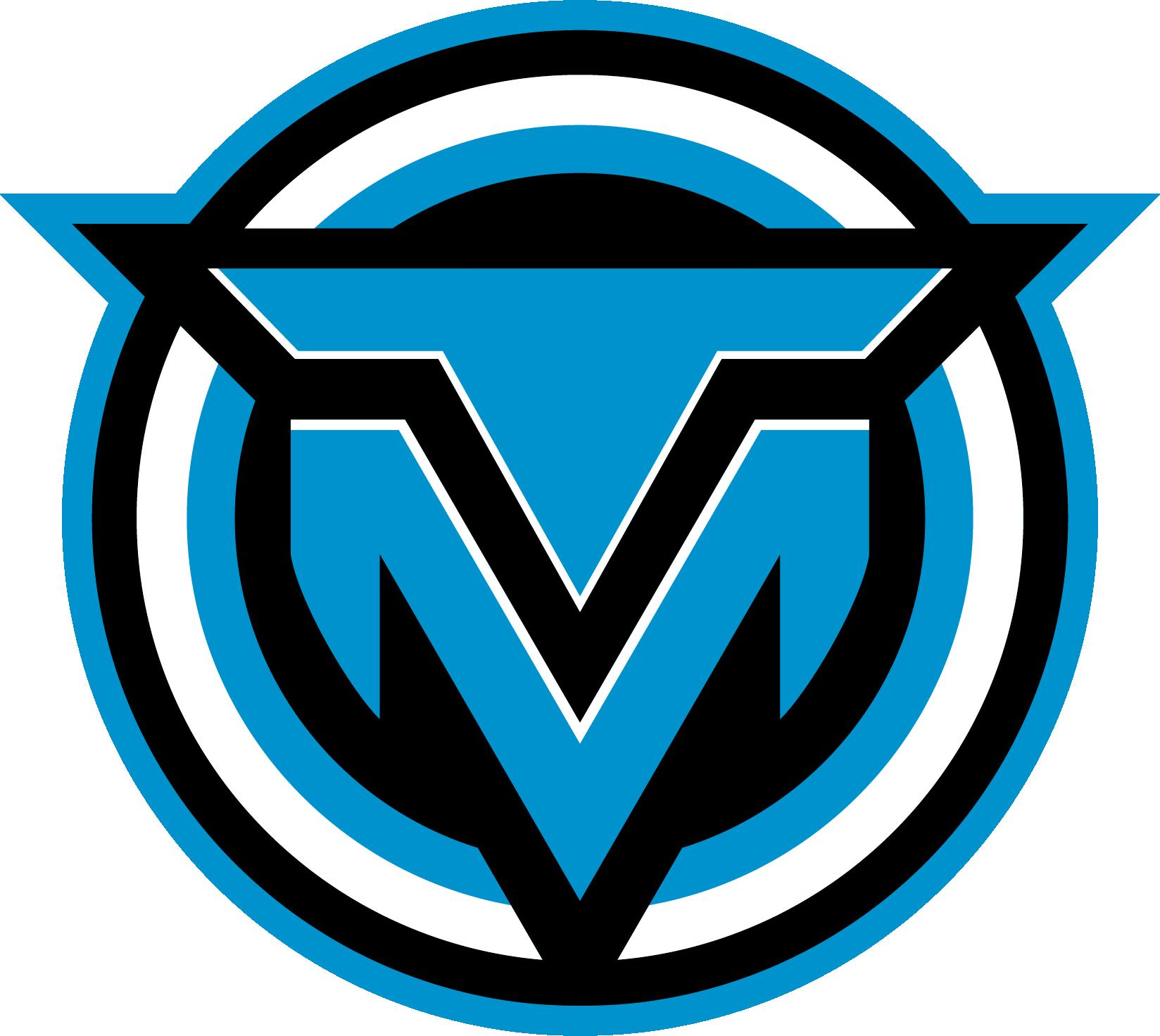 Logo - Technical Moves